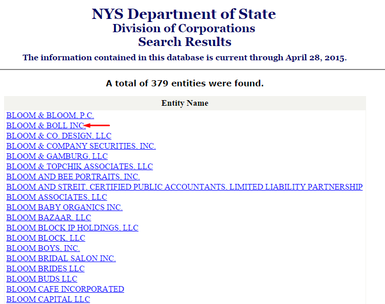 New York Business Entity Search Results For Bloom