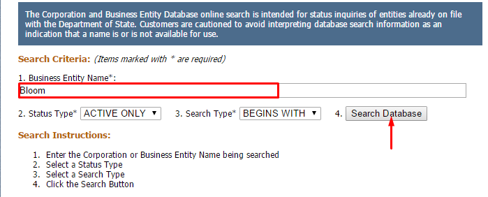 New Yourk Corporate Entity Search